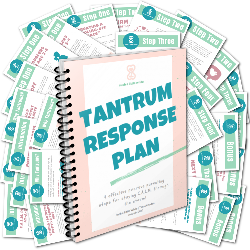 Positive Parenting PDF Tantrum Response Plan by Such a Little While