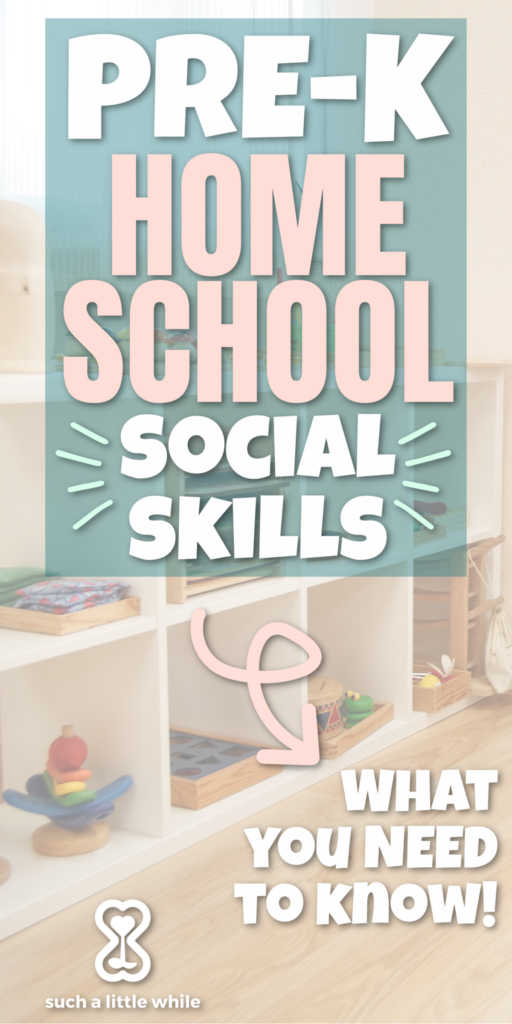 Preschool Homeschool Social Skills: What You Need to Know! By Such a Little While