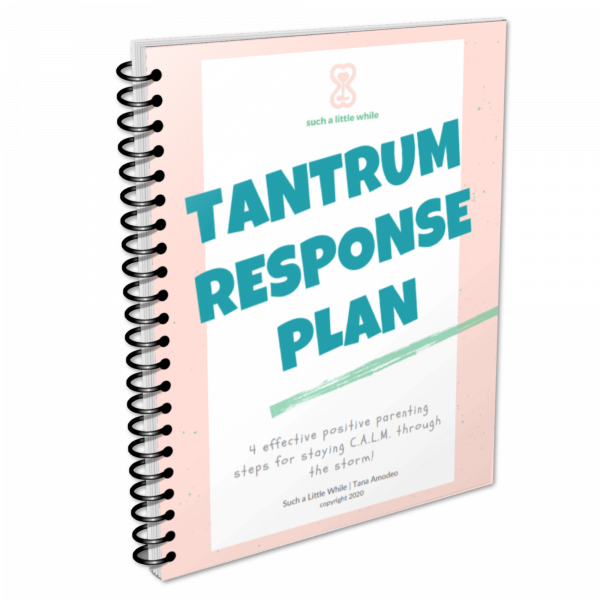 Tantrum Response Plan by Such a Little While
