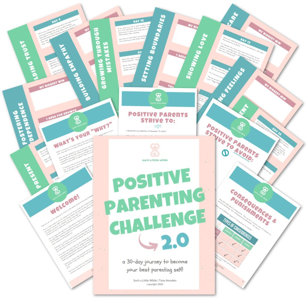 Positive Parenting Challenge 2.0 PDF Workbook by Such a Little While
