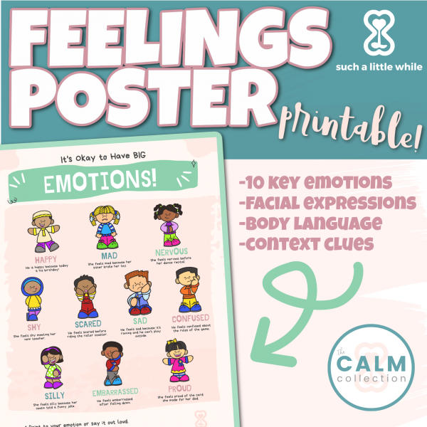 Feelings Poster Printable by Such a Little While