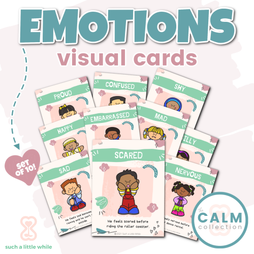 Printable Emotions Visual Cards by Such a Little While
