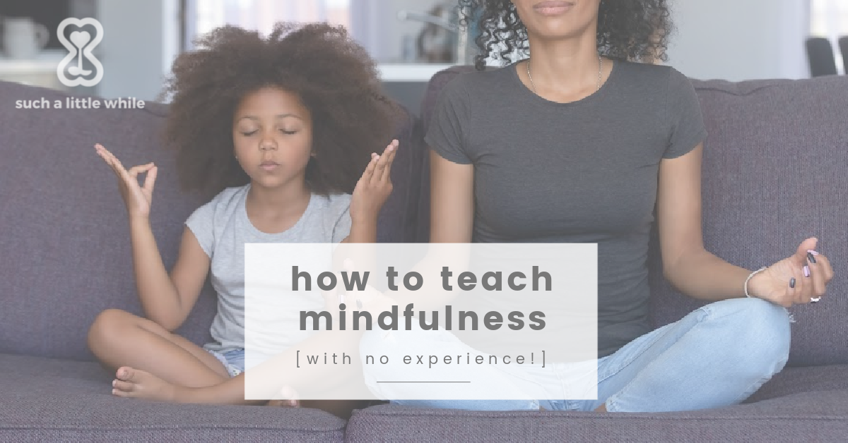 How to Teach Mindfulness with No Experience by Such a Little While