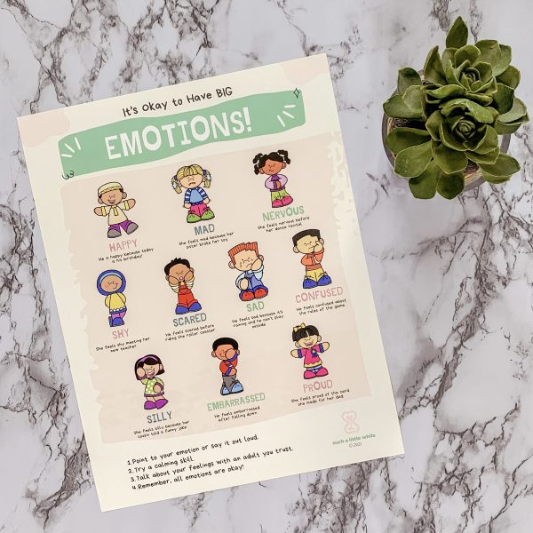 Feelings Poster for Identifying Emotions by Such a Little While