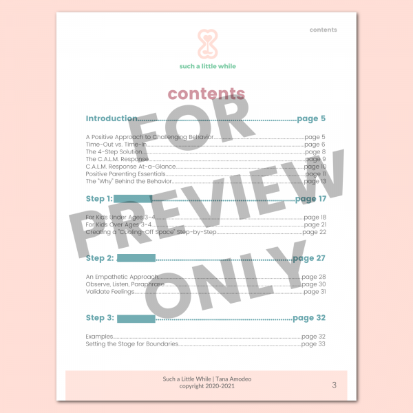Preview 2: Time In Response Plan (Time Out Alternative)