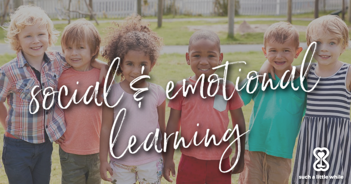 Social & Emotional Learning by Such a Little While